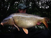 Tom swim 3 - 34 lb 4 oz new pb - October 2013