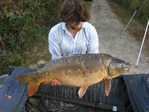 Alex - 36 lb swim 4 - October 2014