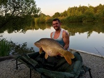 Peter with Scar the Common - 44 lb swim 4  - June 2015