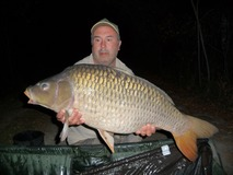 Bob's only common of the week  - 30 lb 14 oz swim 4  - August 2015