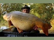 Mick with Amber - 52 lb 12 oz swim 9  - October 2015