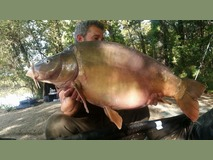 Ian with Nobby - 41 lb 1 oz swim 11  - October 2015