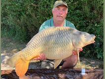 Sir bob - 37 lb 8 oz swim 4  - August 2019
