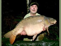 Sir Bob (brace 1) - 41 lb 14 oz swim 9  - November 2019