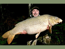 Sir Bob perfect common - 49 lb 14 oz swim 9 - November 2019