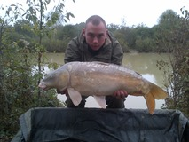 Dale - Future Stunner from the stock  - September 2012